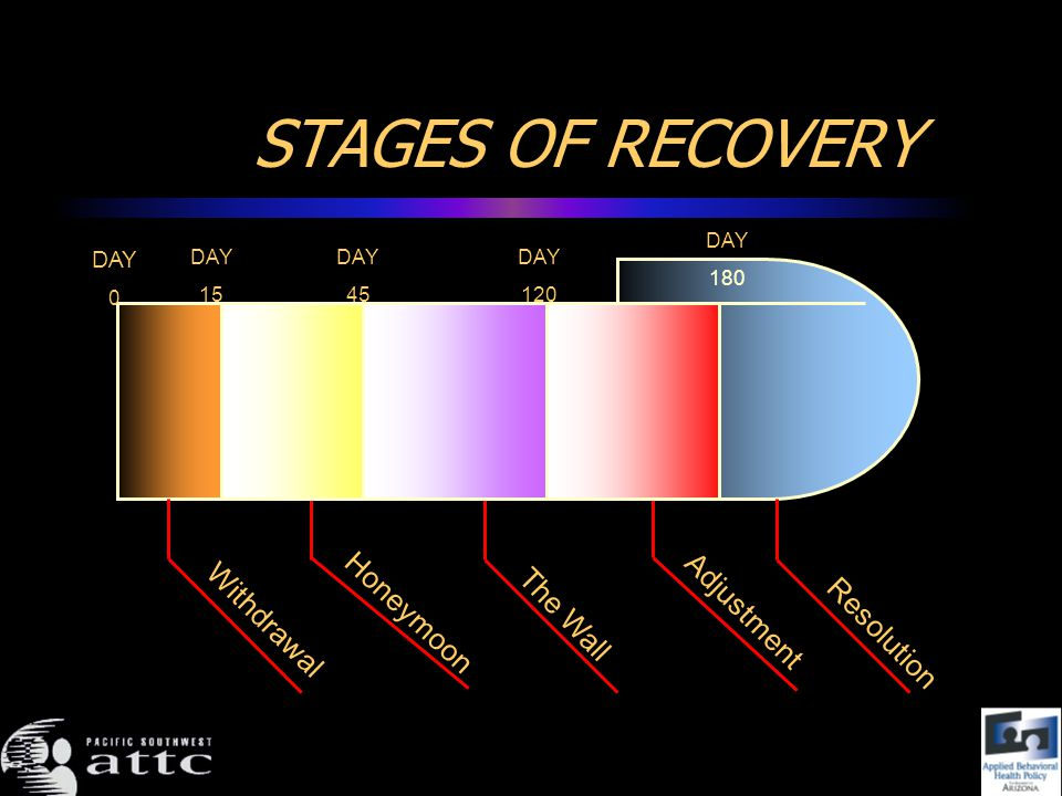 STAGES OF RECOVERY Withdrawal DAY 0 DAY 15 Honeymoon DAY 45 The Wall DAY 120 Resolution Adjustment DAY 180