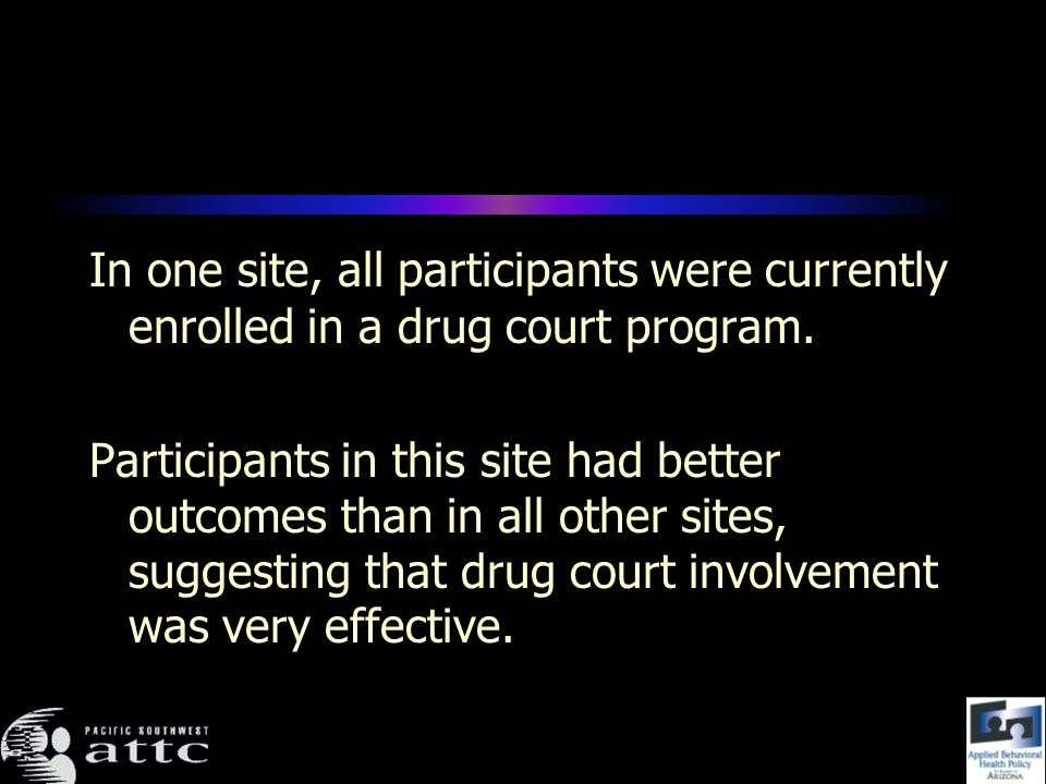 In one site, all participants were currently enrolled in a drug court program.