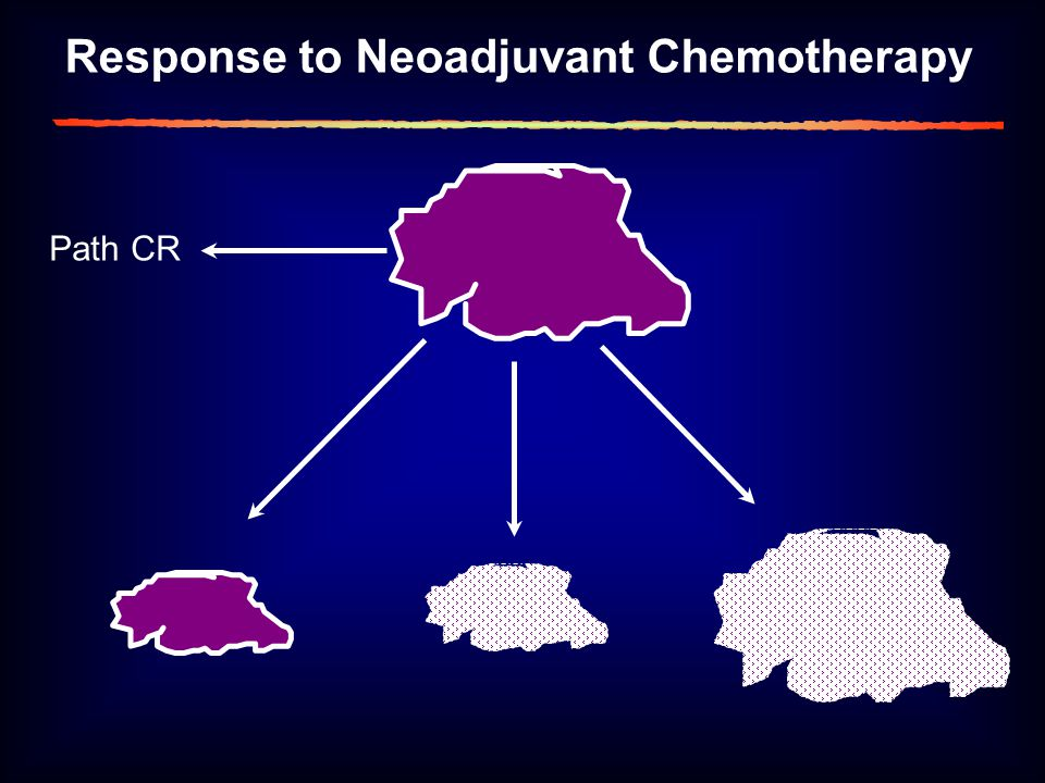 Response to Neoadjuvant Chemotherapy Path CR