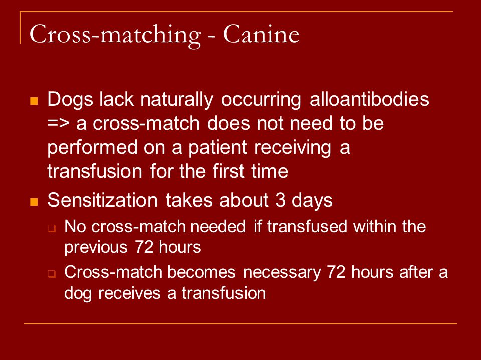 Cross-matching - Canine Dogs lack naturally occurring alloantibodies => a cross-match does not need to be performed on a patient receiving a transfusi