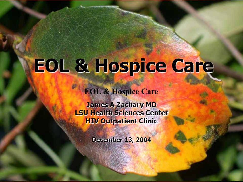 EOL & Hospice Care James A Zachary MD LSU Health Sciences Center HIV Outpatient Clinic December 13, 2004 EOL & Hospice Care