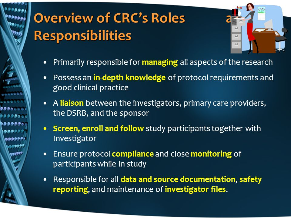 Overview of CRCs Roles and Responsibilities Primarily responsible for managing all aspects of the research Possess an in-depth knowledge of protocol r
