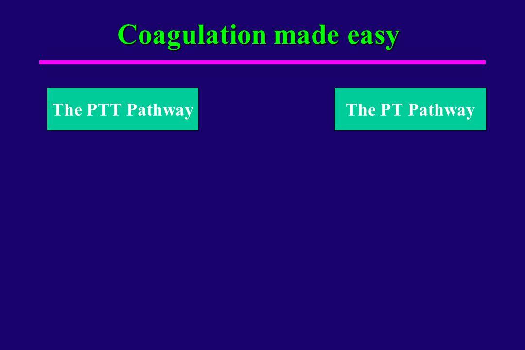 Coagulation made easy X The PTT PathwayThe PT Pathway