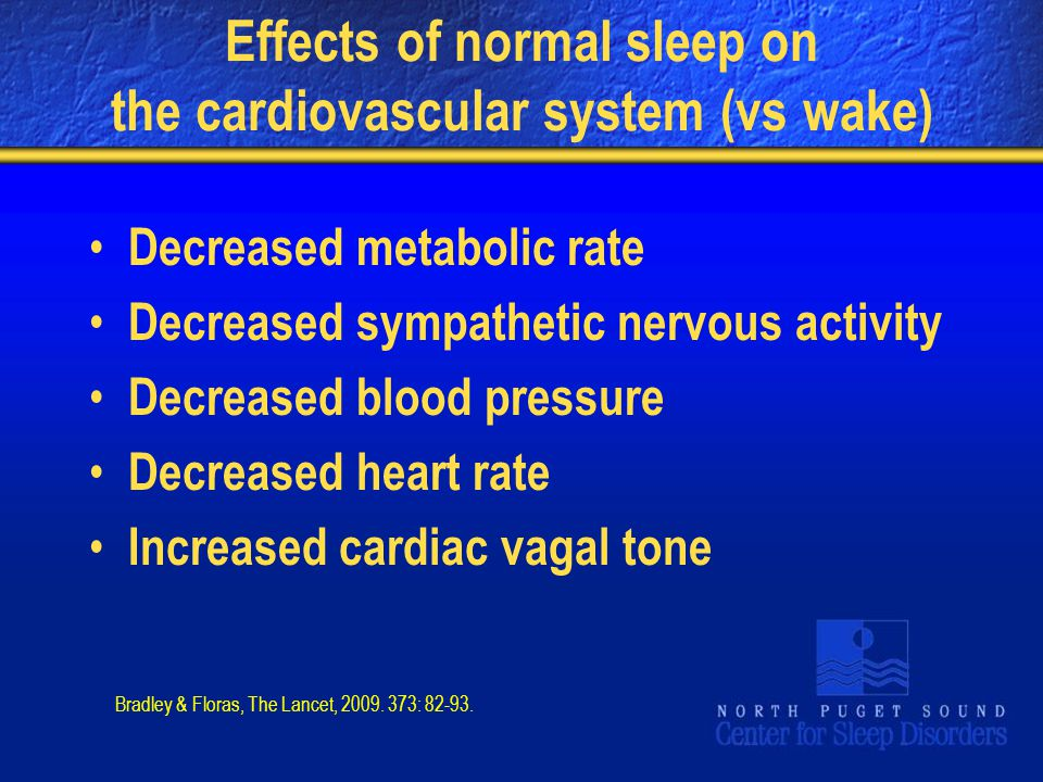 Effects of normal sleep on the cardiovascular system (vs wake) Decreased metabolic rate Decreased sympathetic nervous activity Decreased blood pressur