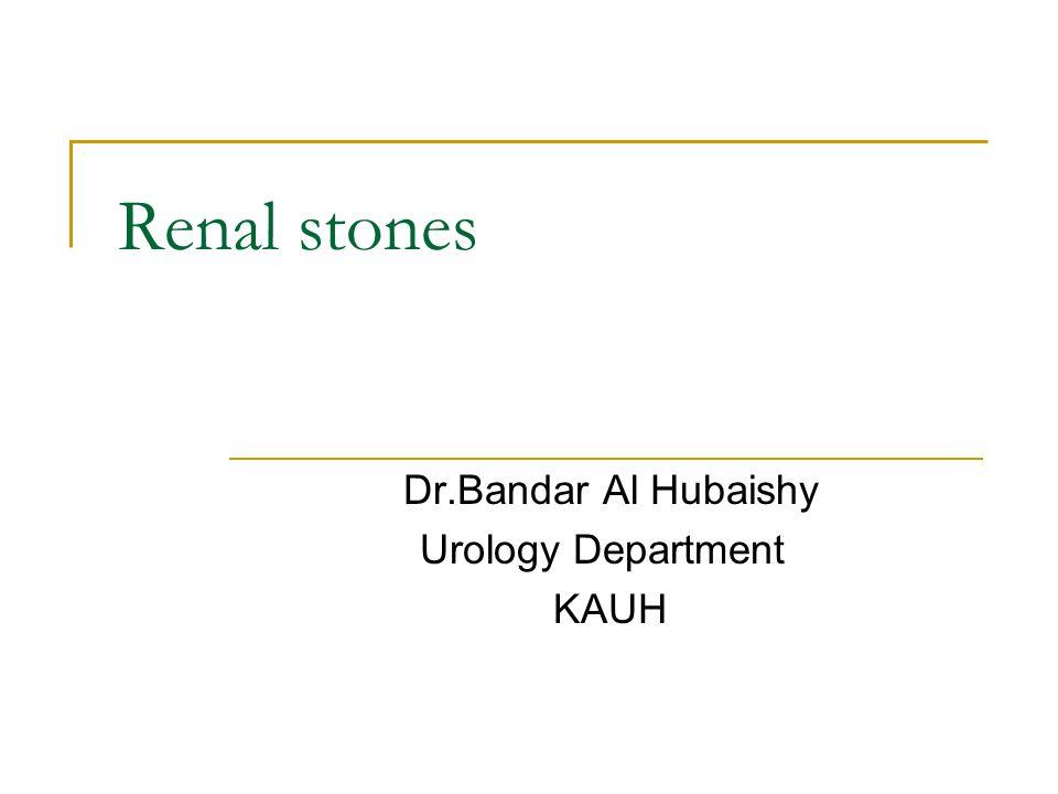 Renal stones Dr.Bandar Al Hubaishy Urology Department KAUH