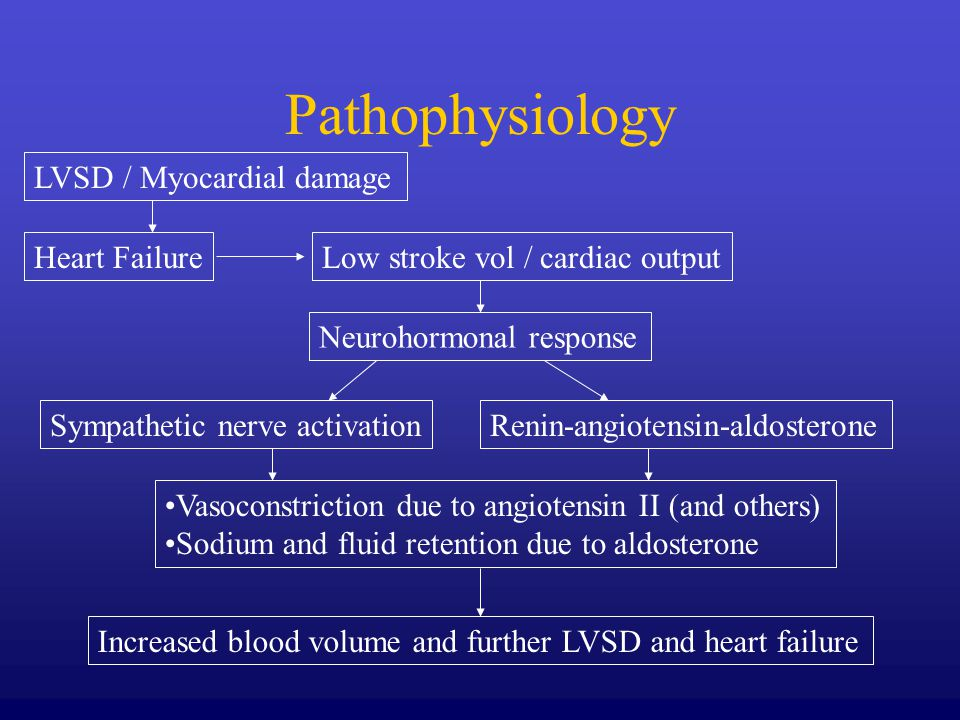 Pathophysiology LVSD / Myocardial damage Heart FailureLow stroke vol / cardiac output Neurohormonal response Sympathetic nerve activationRenin-angiotensin-aldosterone Vasoconstriction due to angiotensin II (and others) Sodium and fluid retention due to aldosterone Increased blood volume and further LVSD and heart failure