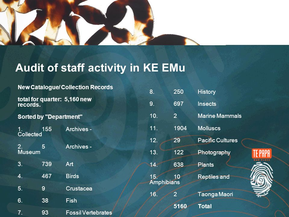 Audit of staff activity in KE EMu New Catalogue/ Collection Records total for quarter: 5,160 new records.