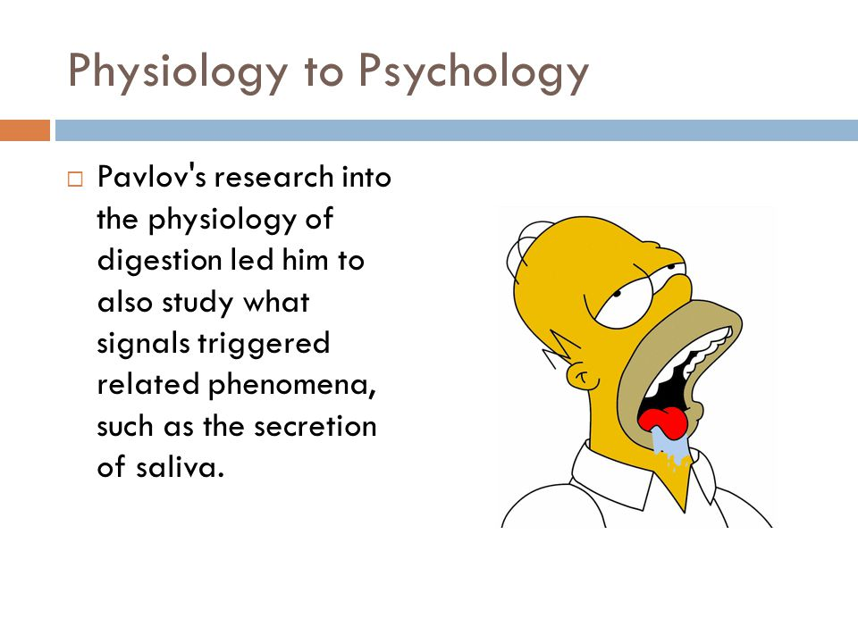 Physiology to Psychology Pavlov's research into the physiology of digestion led him to also study what signals triggered related phenomena, such as th