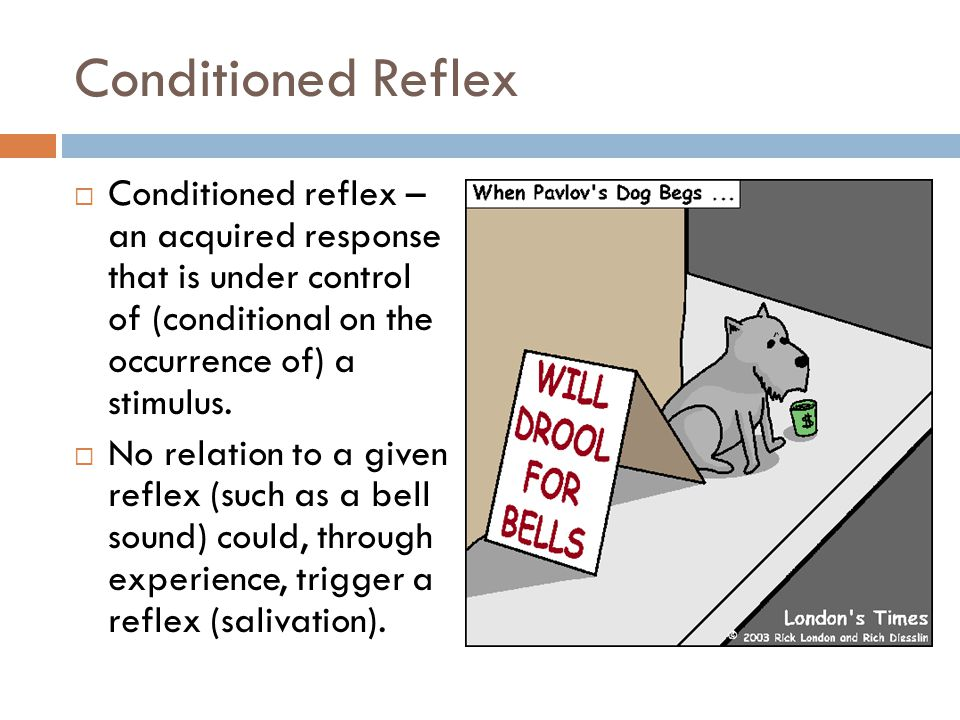 Conditioned Reflex Conditioned reflex – an acquired response that is under control of (conditional on the occurrence of) a stimulus. No relation to a