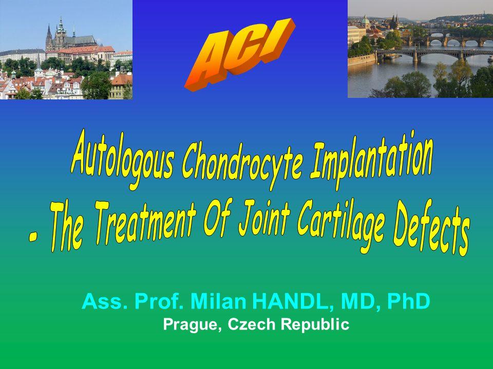 Ass. Prof. Milan HANDL, MD, PhD Prague, Czech Republic