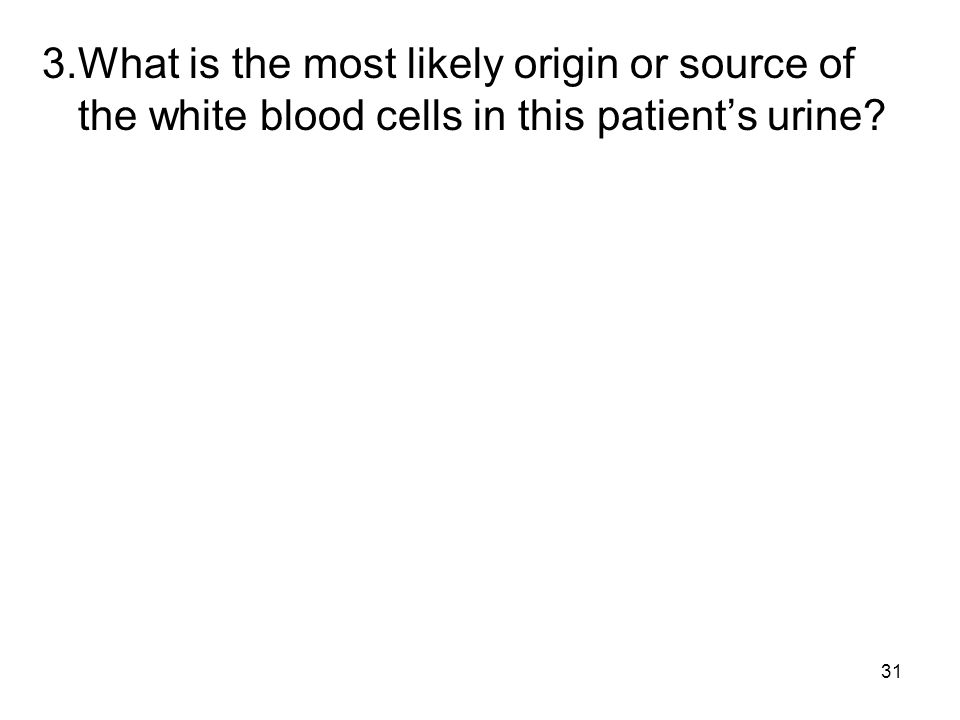 31 3.What is the most likely origin or source of the white blood cells in this patients urine?
