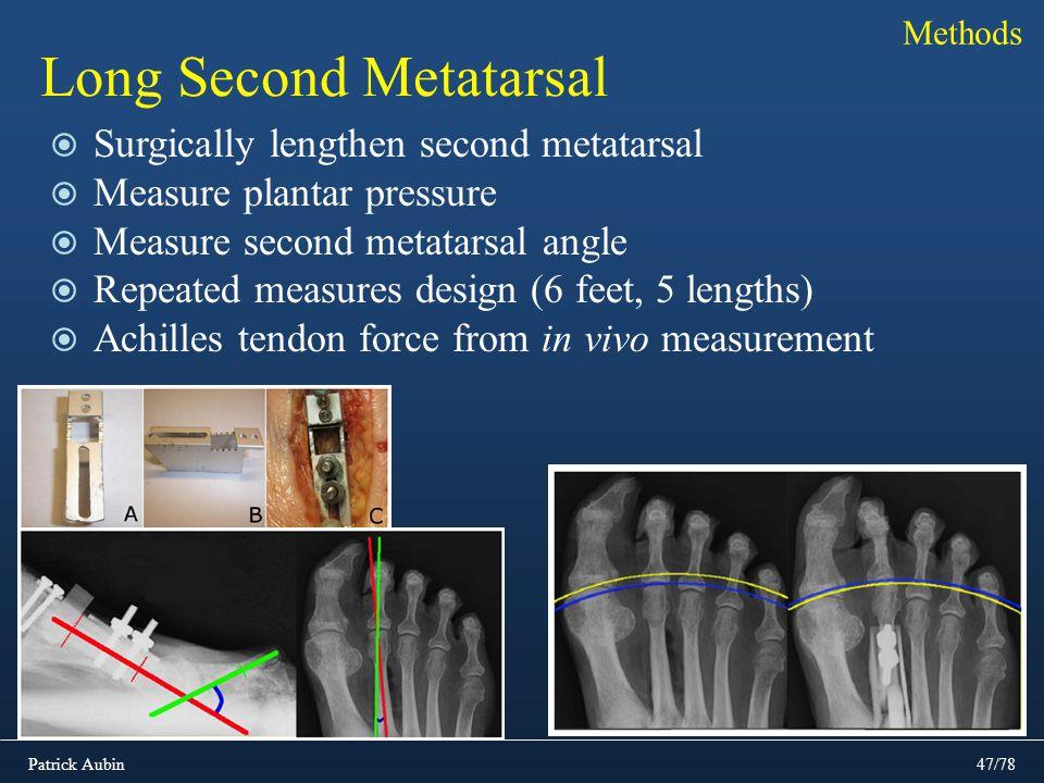 Patrick Aubin47/78 Long Second Metatarsal Surgically lengthen second metatarsal Measure plantar pressure Measure second metatarsal angle Repeated meas