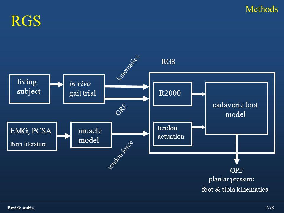 Patrick Aubin7/78 Methods RGS in vivo gait trial R2000RGS GRF tendon actuation muscle model tendon force plantar pressure cadaveric foot model GRF foo