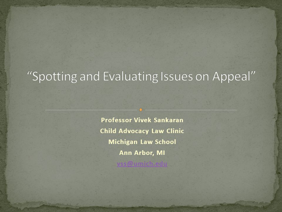 Professor Vivek Sankaran Child Advocacy Law Clinic Michigan Law School Ann Arbor, MI vss@umich.edu