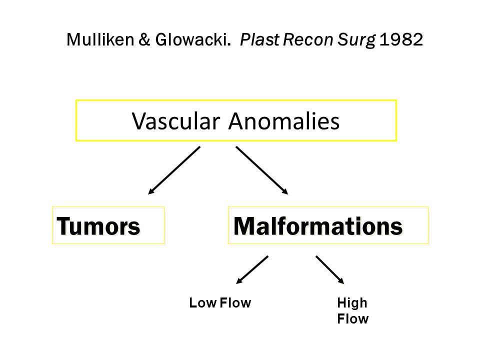 Vascular Anomalies Tumors Malformations Mulliken & Glowacki.