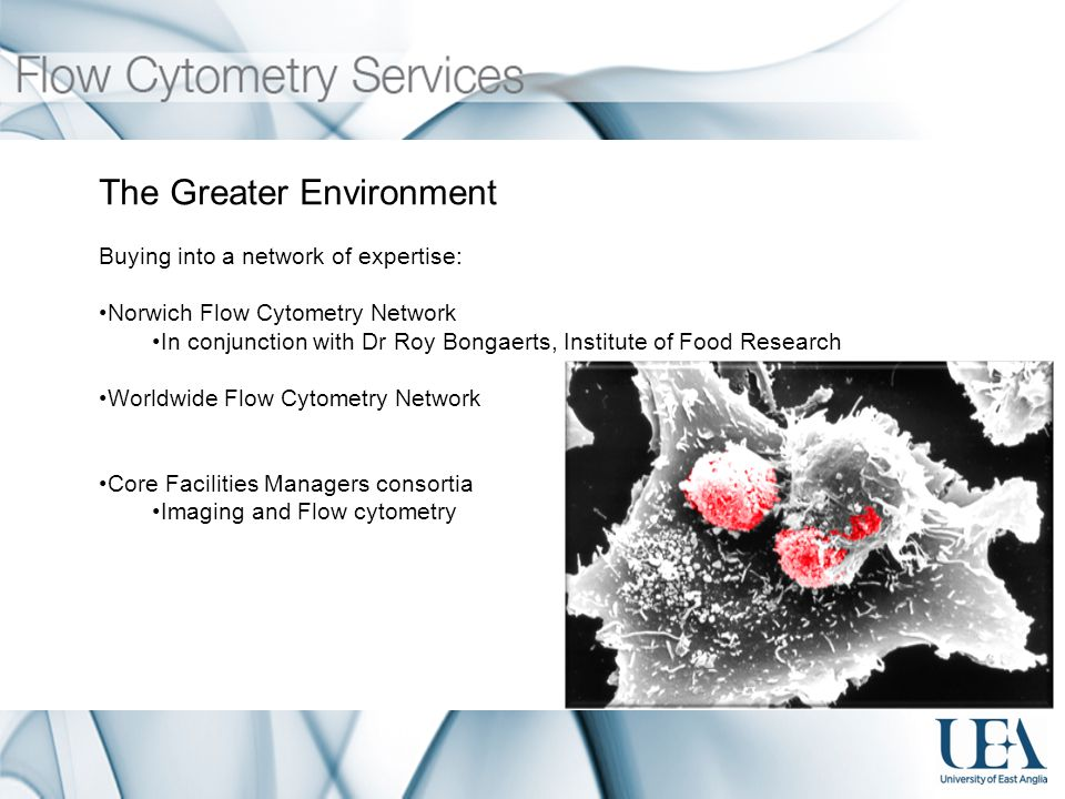 The Greater Environment Buying into a network of expertise: Norwich Flow Cytometry Network In conjunction with Dr Roy Bongaerts, Institute of Food Research Worldwide Flow Cytometry Network Core Facilities Managers consortia Imaging and Flow cytometry
