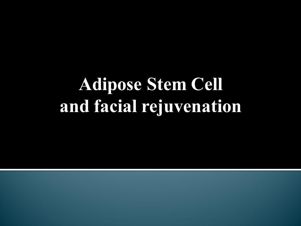 Adipose Stem Cell and facial rejuvenation