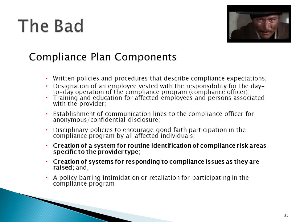 Compliance Plan Components Written policies and procedures that describe compliance expectations; Designation of an employee vested with the responsib