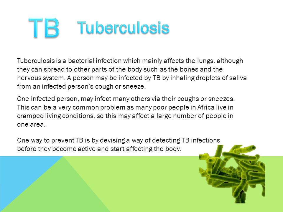 Tuberculosis is a bacterial infection which mainly affects the lungs, although they can spread to other parts of the body such as the bones and the ne