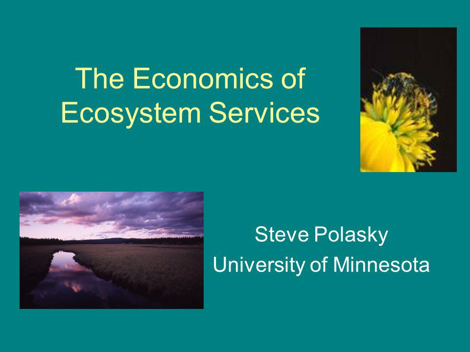 The Economics of Ecosystem Services Steve Polasky University of Minnesota Subtitle: Influencing Policy with Science We can all dream