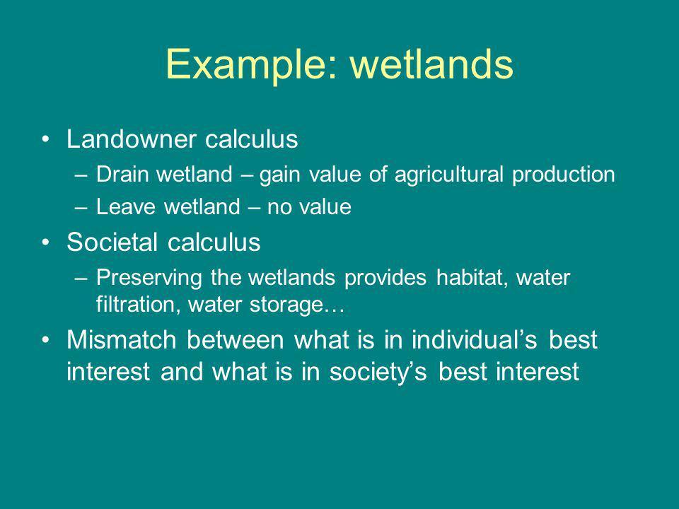 Example: wetlands Landowner calculus –Drain wetland – gain value of agricultural production –Leave wetland – no value Societal calculus –Preserving th
