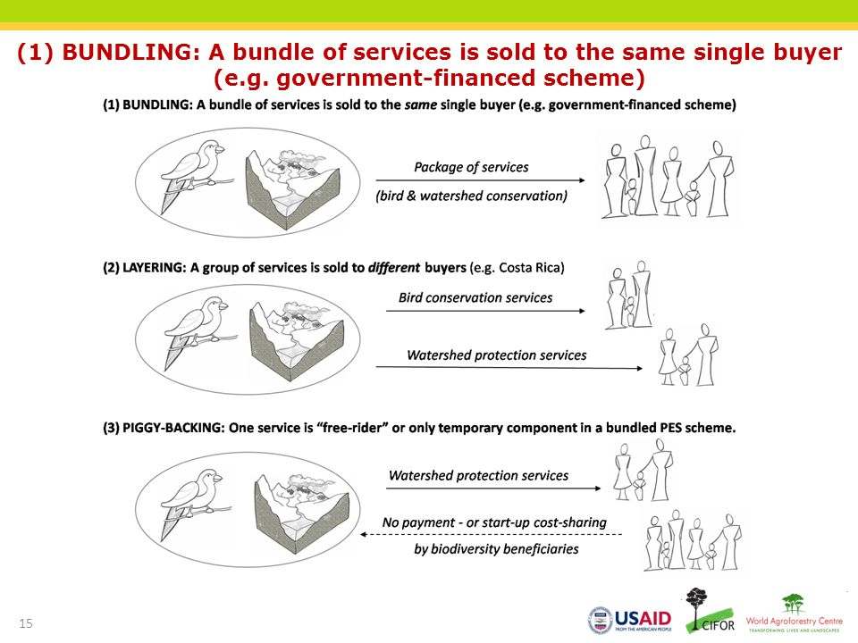(1) BUNDLING: A bundle of services is sold to the same single buyer (e.g.