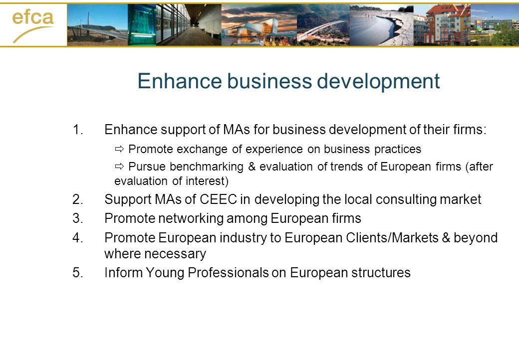 Enhance business development 1.Enhance support of MAs for business development of their firms: Promote exchange of experience on business practices Pursue benchmarking & evaluation of trends of European firms (after evaluation of interest) 2.Support MAs of CEEC in developing the local consulting market 3.Promote networking among European firms 4.Promote European industry to European Clients/Markets & beyond where necessary 5.Inform Young Professionals on European structures