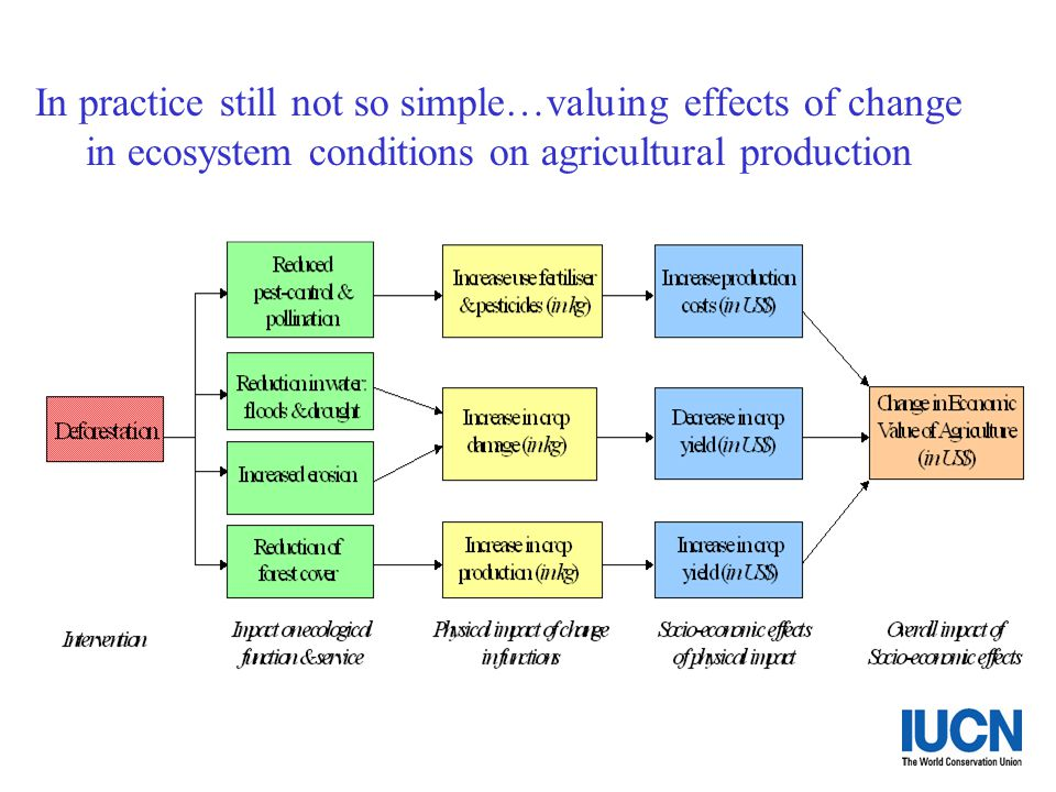 In practice still not so simple…valuing effects of change in ecosystem conditions on agricultural production