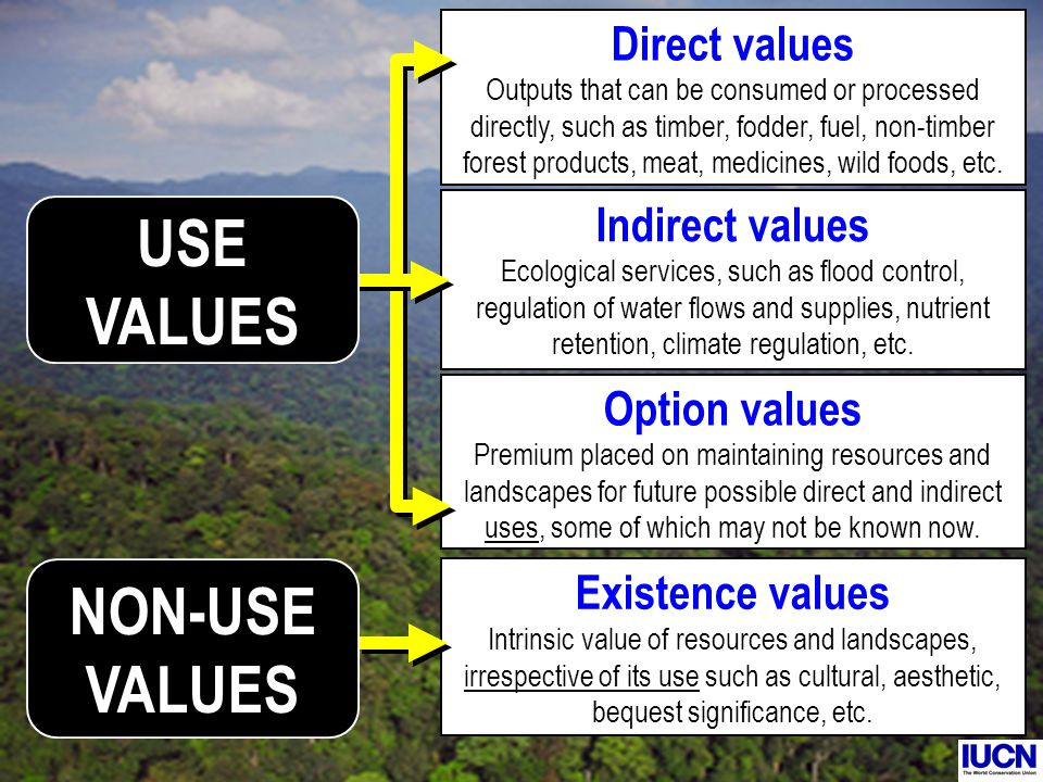 Existence values Intrinsic value of resources and landscapes, irrespective of its use such as cultural, aesthetic, bequest significance, etc. Direct v