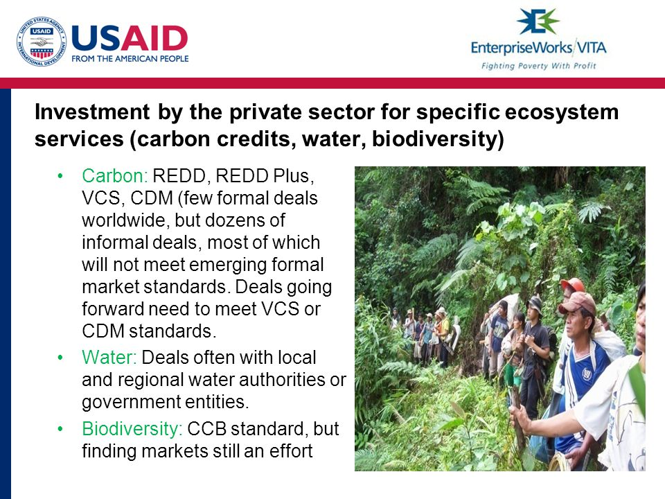 Investment by the private sector for specific ecosystem services (carbon credits, water, biodiversity) Carbon: REDD, REDD Plus, VCS, CDM (few formal deals worldwide, but dozens of informal deals, most of which will not meet emerging formal market standards.