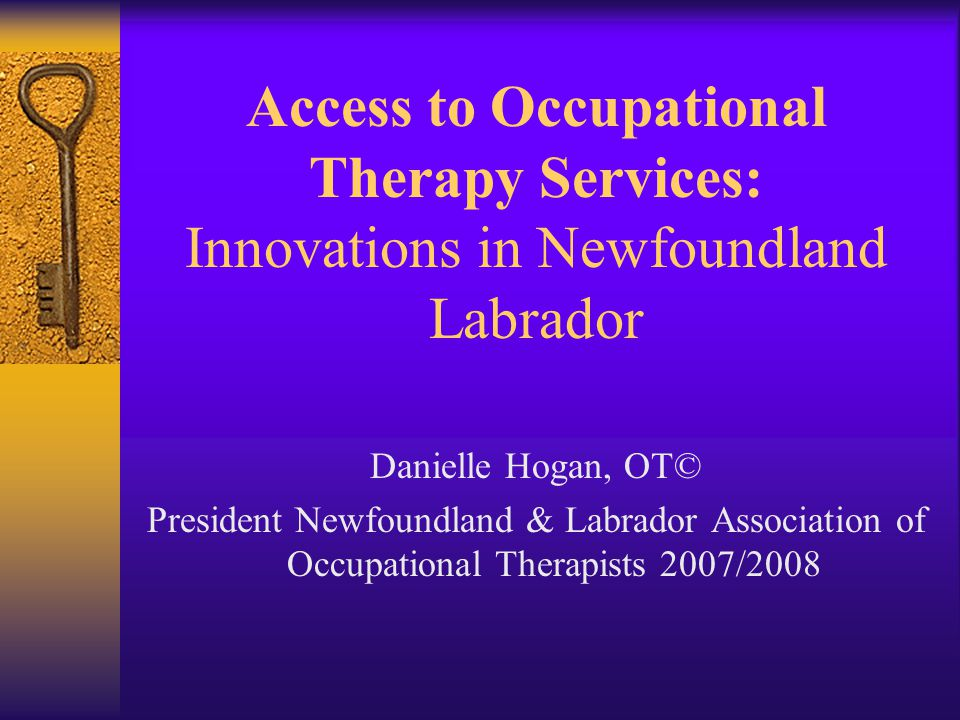 Access to Occupational Therapy Services: Innovations in Newfoundland Labrador Danielle Hogan, OT© President Newfoundland & Labrador Association of Occupational Therapists 2007/2008
