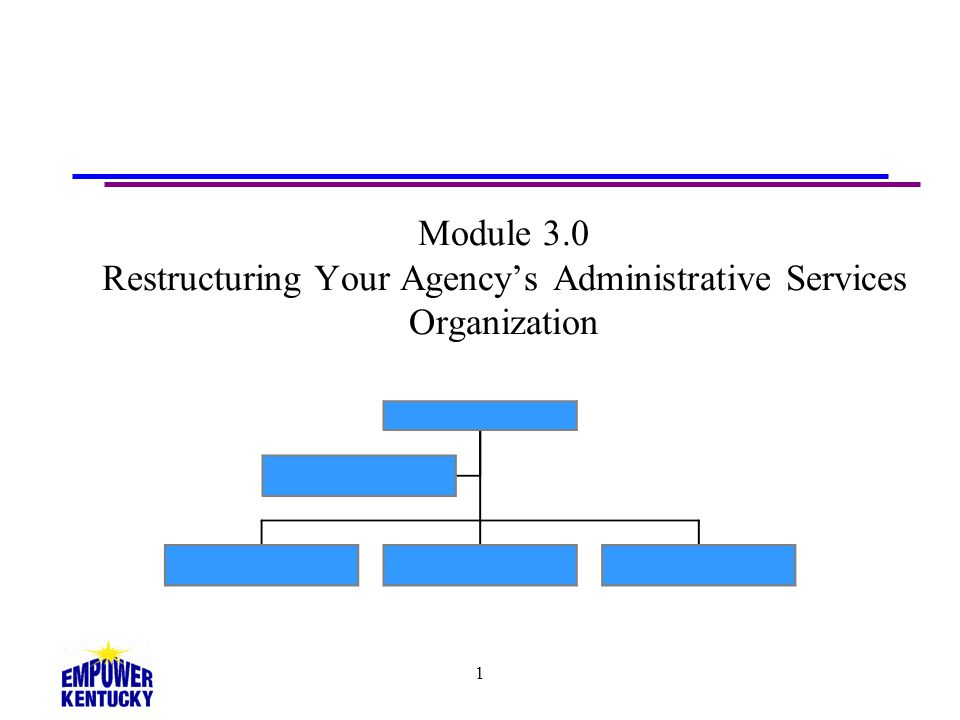 1 Module 3.0 Restructuring Your Agencys Administrative Services Organization