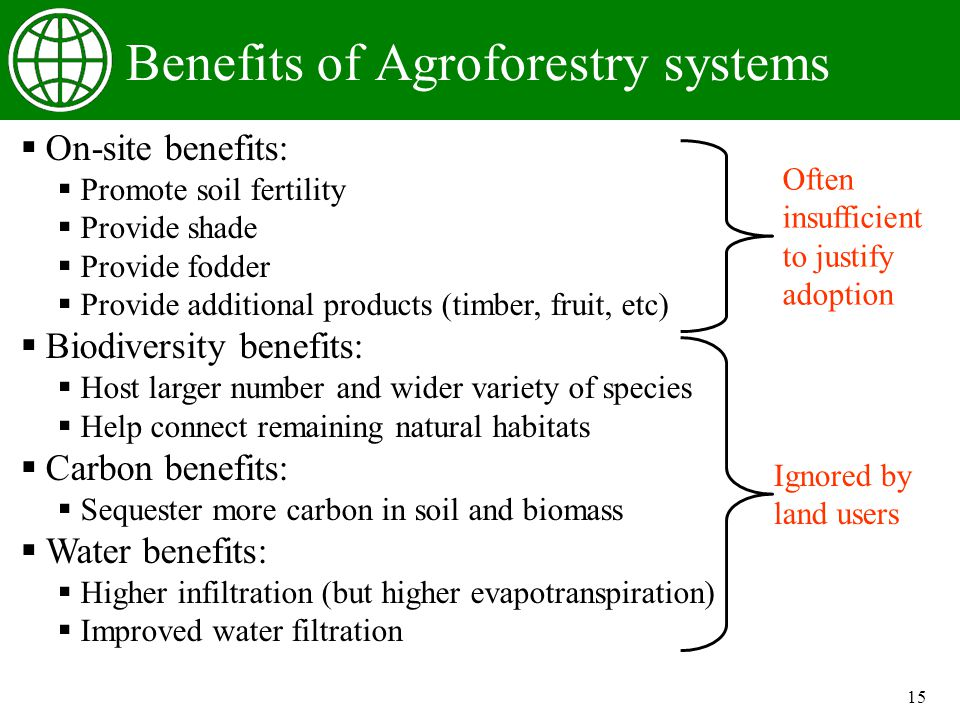 15 Benefits of Agroforestry systems On-site benefits: Promote soil fertility Provide shade Provide fodder Provide additional products (timber, fruit, etc) Biodiversity benefits: Host larger number and wider variety of species Help connect remaining natural habitats Carbon benefits: Sequester more carbon in soil and biomass Water benefits: Higher infiltration (but higher evapotranspiration) Improved water filtration Often insufficient to justify adoption Ignored by land users