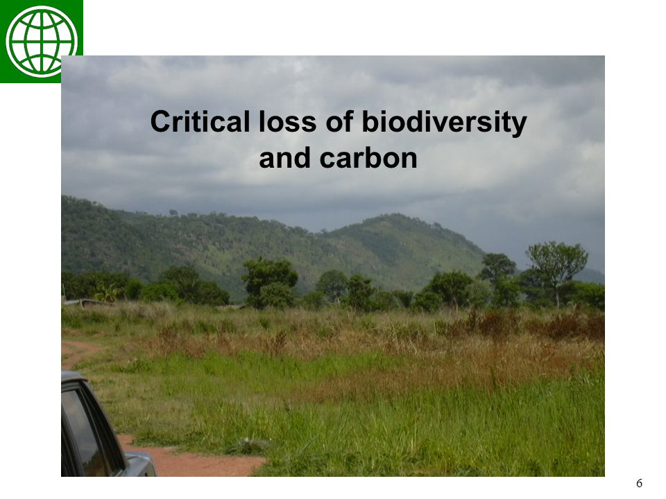 6 Critical loss of biodiversity and carbon