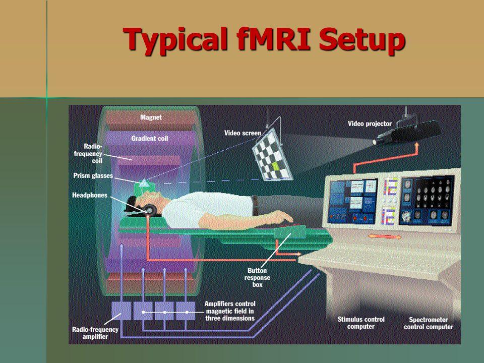 Typical fMRI Setup