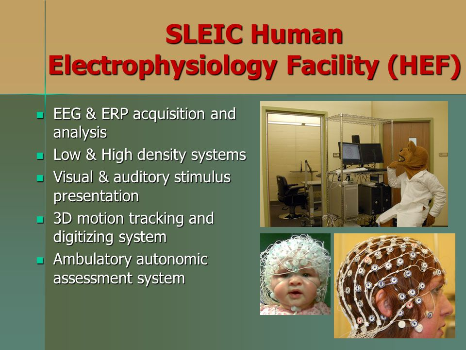 SLEIC Human Electrophysiology Facility (HEF) EEG & ERP acquisition and analysis EEG & ERP acquisition and analysis Low & High density systems Low & High density systems Visual & auditory stimulus presentation Visual & auditory stimulus presentation 3D motion tracking and digitizing system 3D motion tracking and digitizing system Ambulatory autonomic assessment system Ambulatory autonomic assessment system