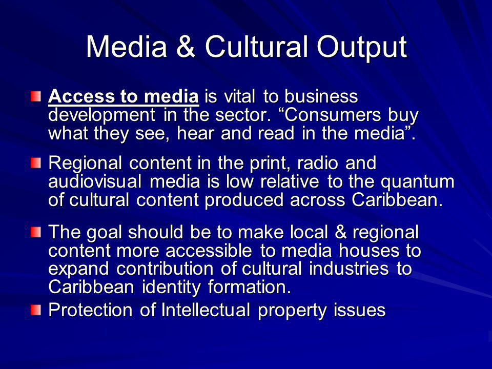 Media & Cultural Output Access to media is vital to business development in the sector.