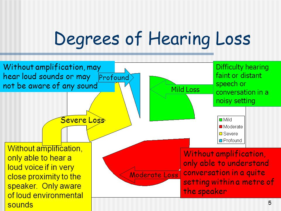 6 Referral Process 1.Assessment by an Audiologist* 2.