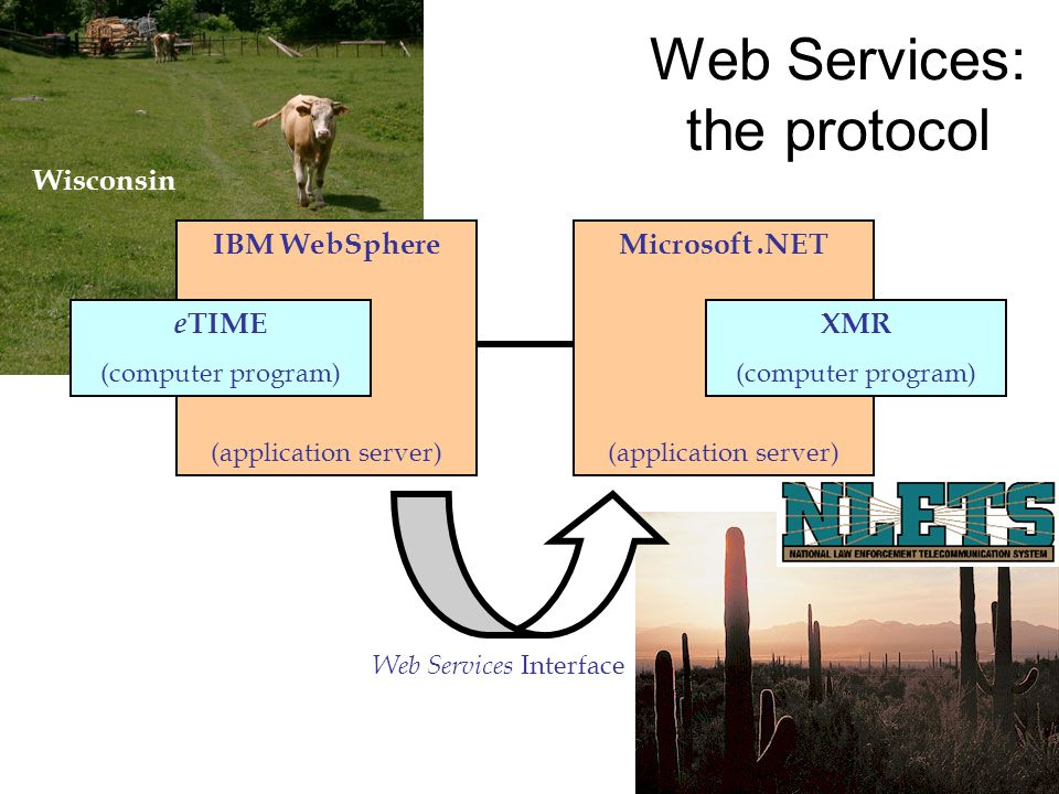 Microsoft.NET (application server) IBM WebSphere (application server) e TIME (computer program) XMR (computer program) Web Services Interface Wisconsin Web Services: the protocol