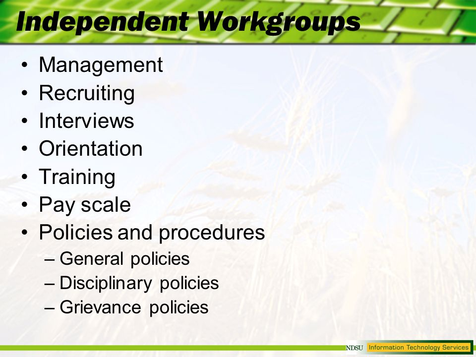 Independent Workgroups Management Recruiting Interviews Orientation Training Pay scale Policies and procedures –General policies –Disciplinary policies –Grievance policies