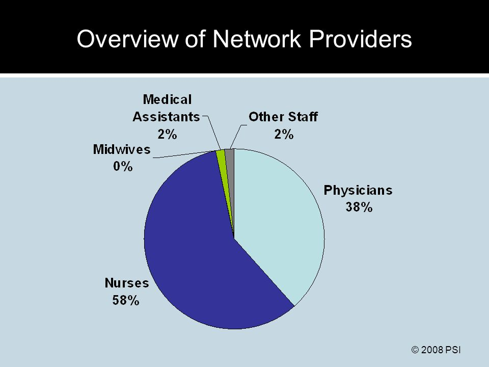 © 2008 PSI Overview of Network Providers