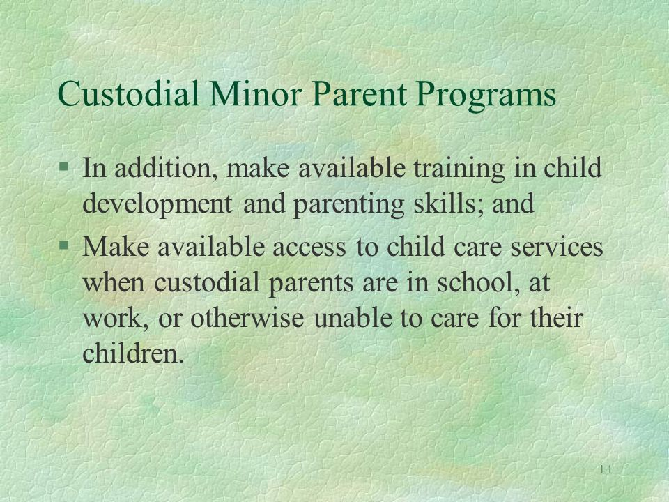 14 Custodial Minor Parent Programs §In addition, make available training in child development and parenting skills; and §Make available access to child care services when custodial parents are in school, at work, or otherwise unable to care for their children.