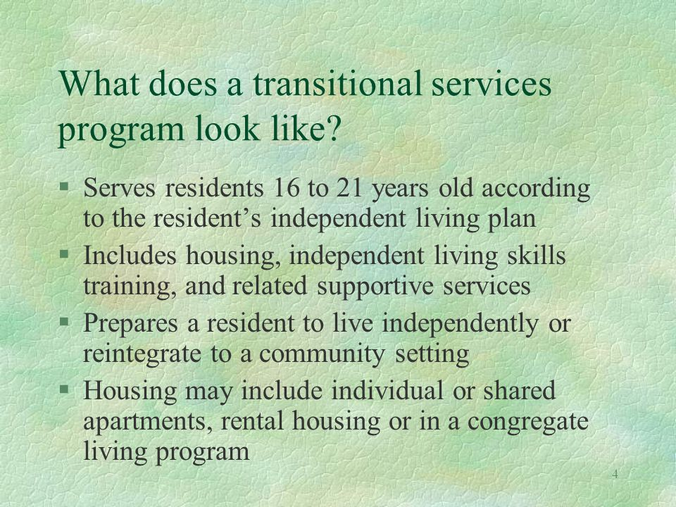 4 What does a transitional services program look like.