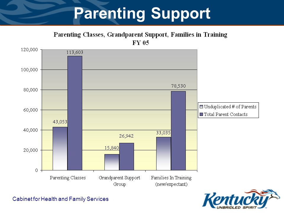 Cabinet for Health and Family Services Educational Support