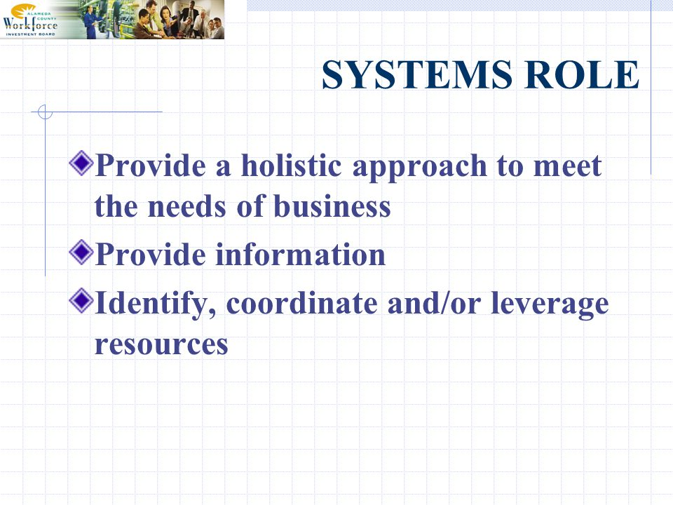 SYSTEMS ROLE Provide a holistic approach to meet the needs of business Provide information Identify, coordinate and/or leverage resources