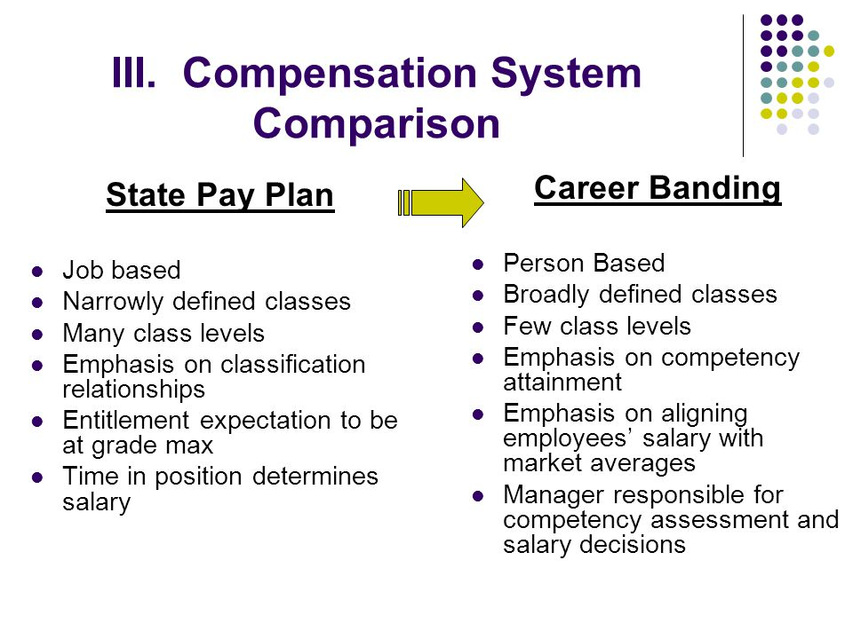 III. Compensation System Comparison State Pay Plan Job based Narrowly defined classes Many class levels Emphasis on classification relationships Entit