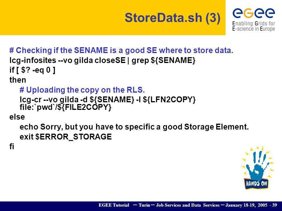 EGEE Tutorial – Turin – Job Services and Data Services – January 18-19, 2005 - 39 # Checking if the SENAME is a good SE where to store data. lcg-infos