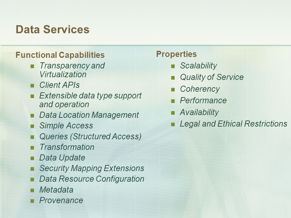 Data Services Functional Capabilities Transparency and Virtualization Client APIs Extensible data type support and operation Data Location Management