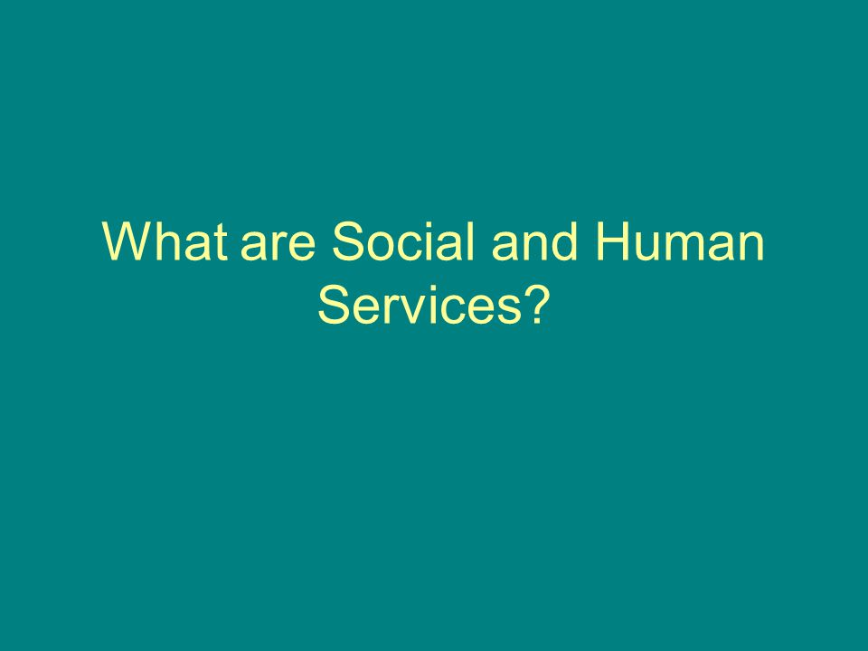 What are Social and Human Services