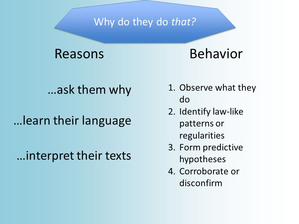 BehaviorReasons Why do they do that.